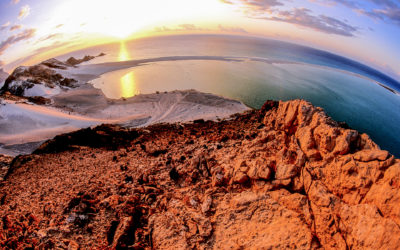 Isola di Soqotra